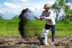 USE ORGANIC FERTILIZER