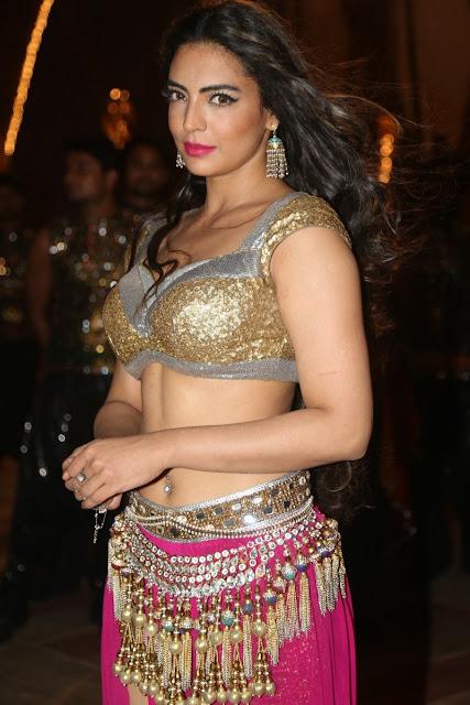 Model Shwetha Bharadwaj Hot Navel Expose Pics