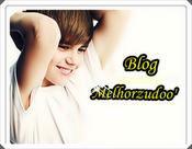 Blog Melhorzudoo'