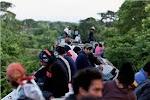 """""""Las patronas"""" del tren de los migrantes"""