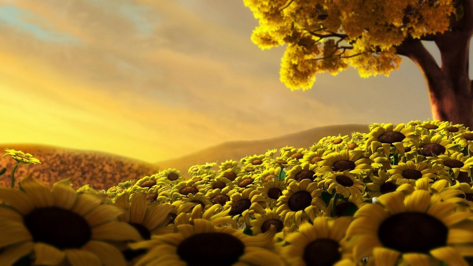 Gambar Bunga Matahari Animasi 3D