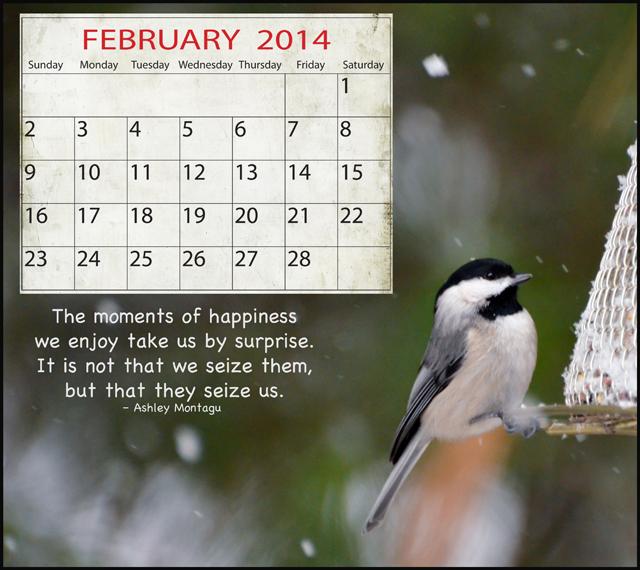Calendar Quotes For February : February quotes for calendars quotesgram