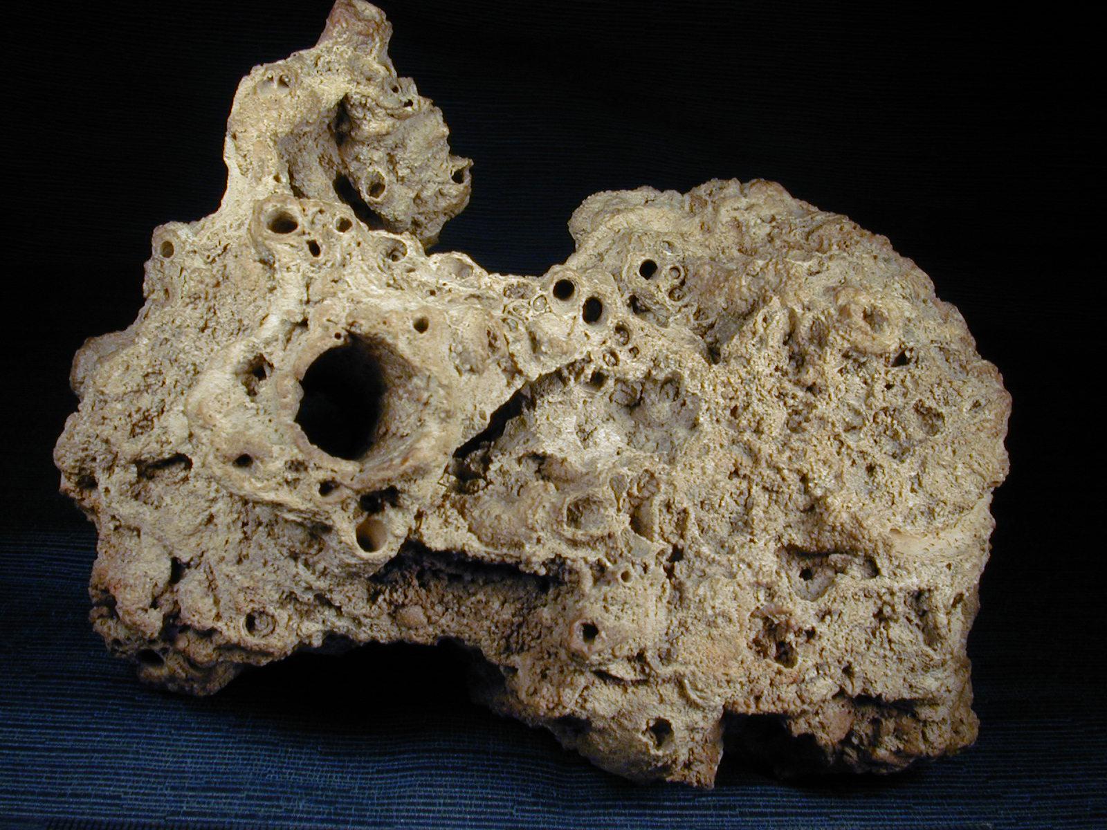 Materiales3a p treos naturales for Travertino roca