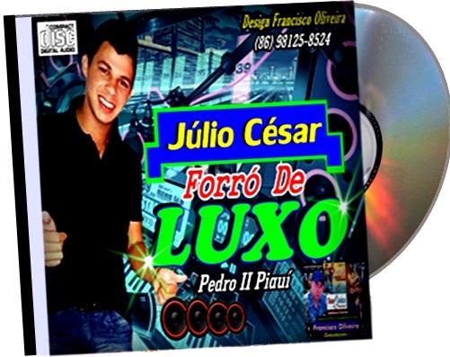 CD FORRÓ DE LUXO DE PEDRO II PIAUÍ