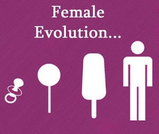 female evolution funny picture