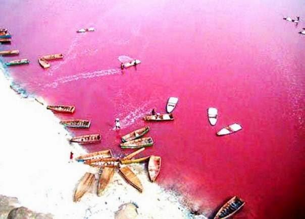Lago Retba o Pink Lake, Dakar (Senegal)