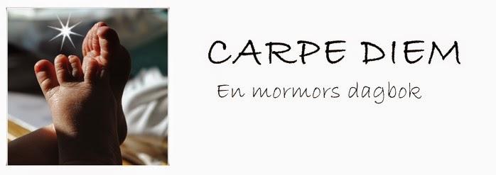 Carpe Diem - en mormors dagbok