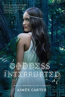 Goddess Interrupted cover