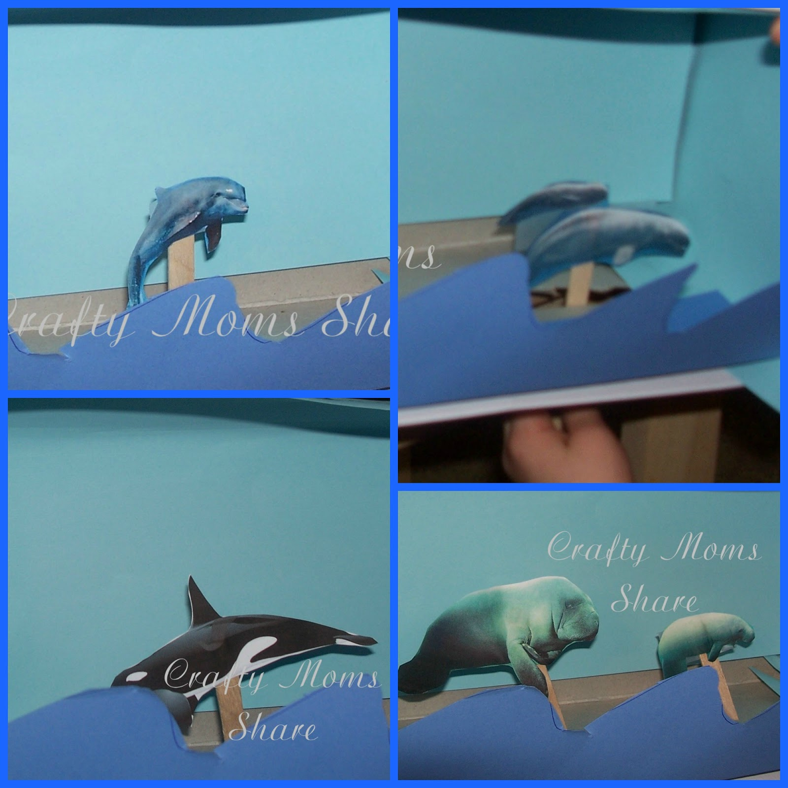 crafty moms share wild and free dolphins whales and manatees