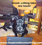 Guided Grant-Writing Labs!