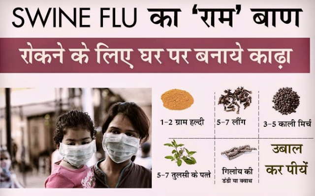 Ayurvedic Treatment for Swine Influenza Flu