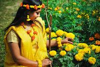 Bangladesh celebrates Basanta Utsab: Pohala falgun utsab picture