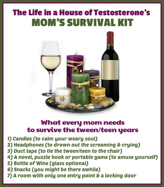 liah momsurvivalkit The Moms Survival Kit