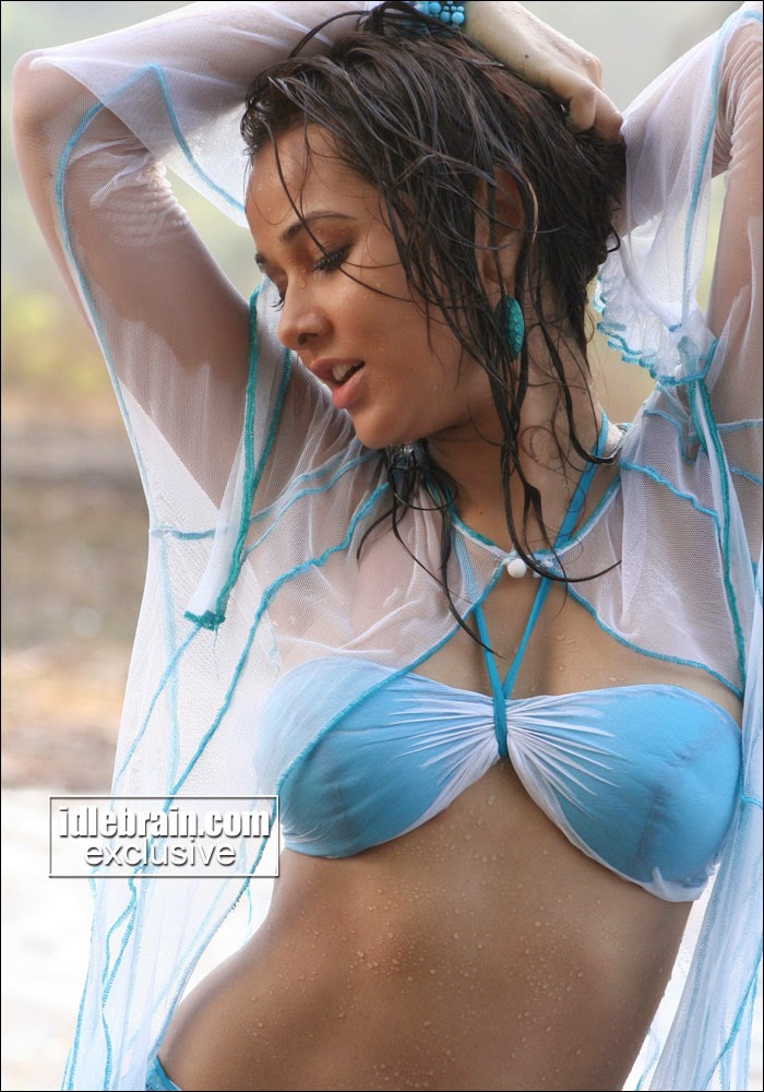 Nisha Kothari wet look in blue bikini in bollywood films