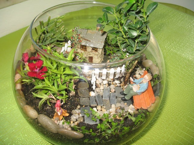 mini jardim de cactus : mini jardim de cactus: miniature desert animals and cactus are the decoration of this really