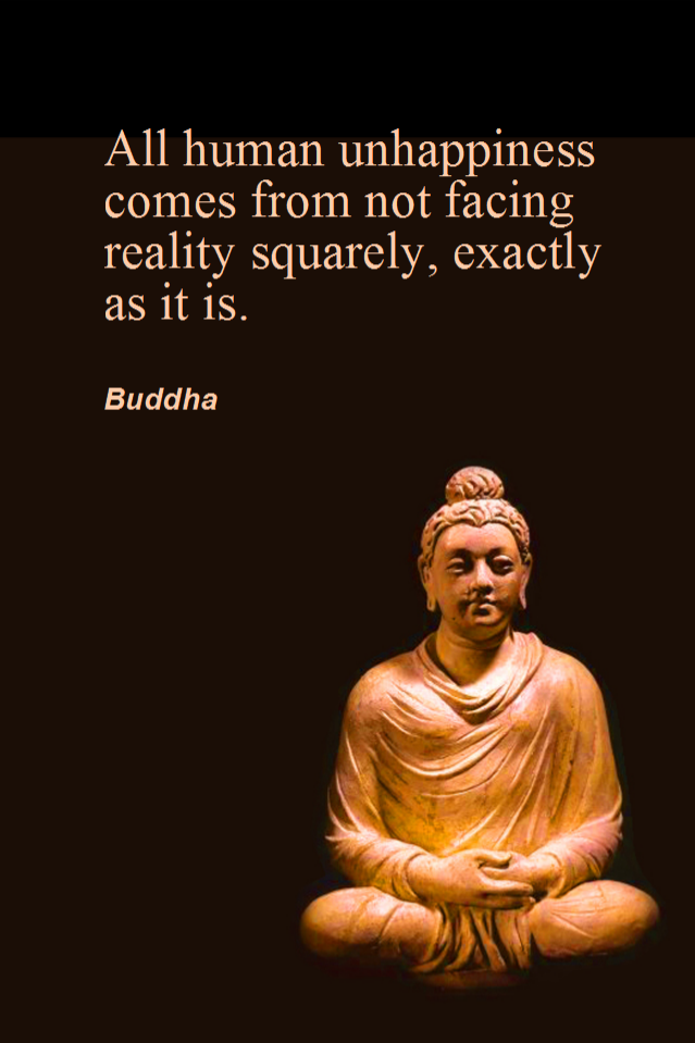 visual quote - image quotation for ACCEPTANCE - All human unhappiness comes from not facing reality squarely, exactly as it is. - Buddha