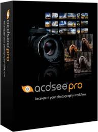 ACDSEE PRO 5.2 BUILD 175 FULL PATCH