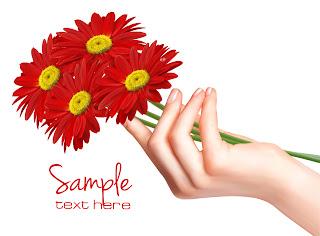 手の平の赤いヒナギク daisy flowers background vector