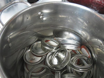 Canning Rings and Lids in pot of hot water