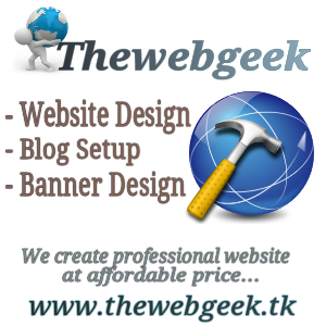 Professional Website?