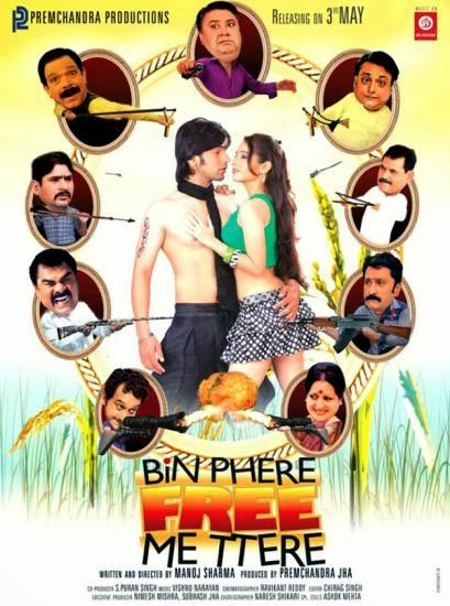 Bin Phere Free Me Tere 2013 Hindi WEB HDRip 480p 350mb
