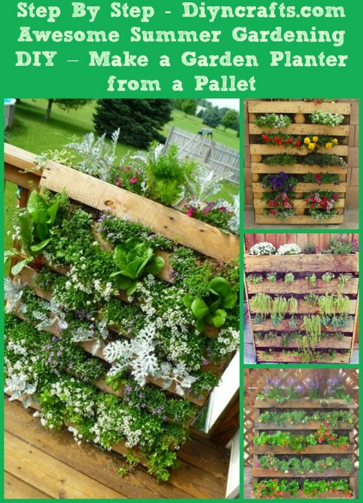 Making a garden planter from pallets gardening my for What to grow in a pallet garden