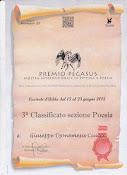 Premio Pegasus, Mostra Internazionale Arte Contemporanea