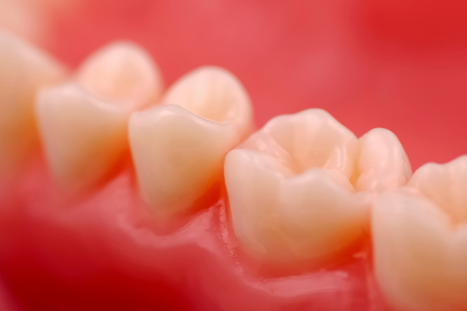 Diş Eti Nasıl Korunur