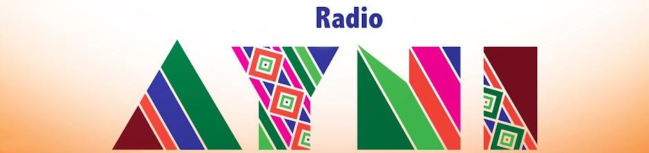 Radio AYNI