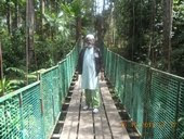 botani shah alam