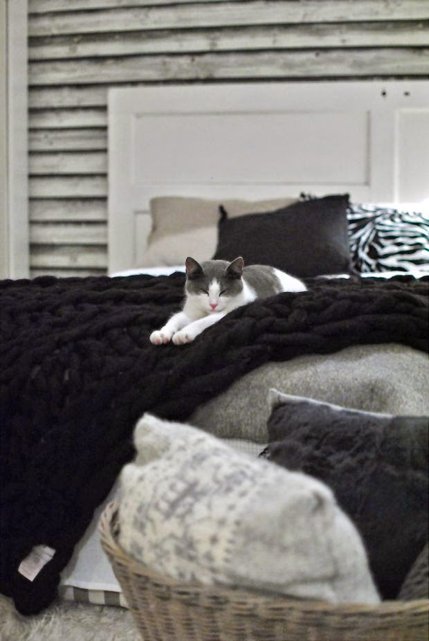 gästrum kattunge modernwool ullpläd
