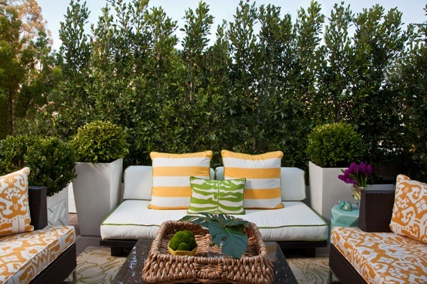 xardinnova terrazas ajardinadas