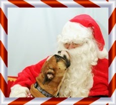 Picture of Santa and pit bull