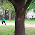 Walter Scott Shooting: Police Officer Charged With Murder