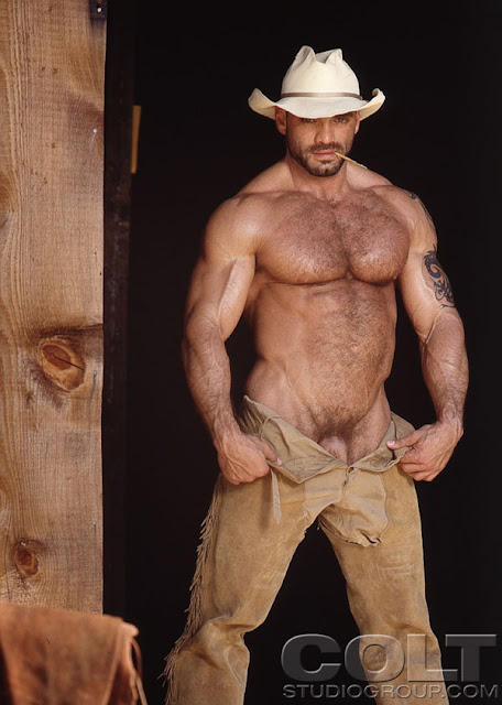 Hairy naked gentlemen that'd