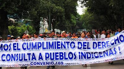 Solidaridad con las guatemaltecas y guatemaltecos del campo