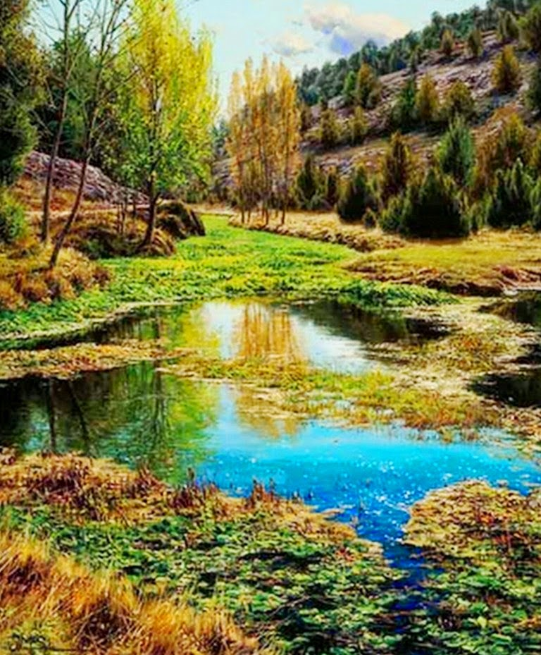 paisajes-hiperrealistas-del-campo
