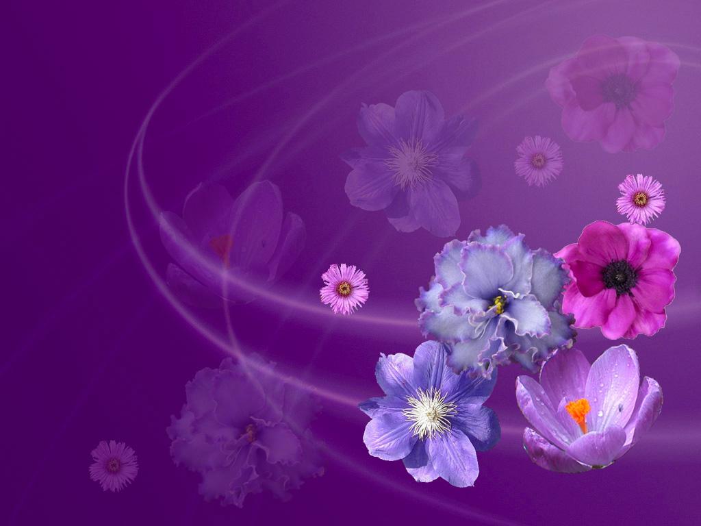http://1.bp.blogspot.com/-OOFAYB50-gA/T_K2UubpY9I/AAAAAAAAAbw/wBZmxQtTF84/s1600/Masaüstü-arka-plan-çiçek-resimleri1.jpg