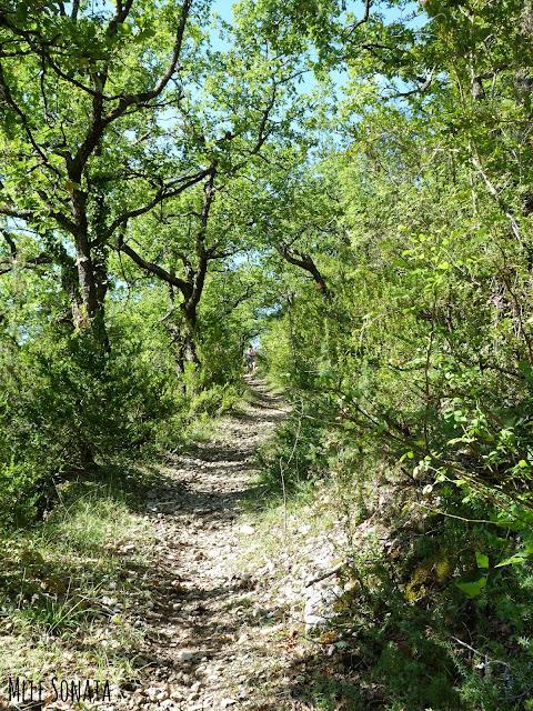 Randonnée dans le lot Cahors