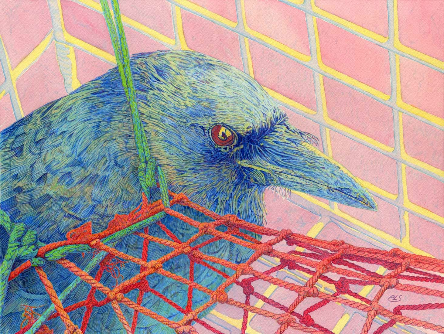 "Crow in Lobster Trap - Watercolor 18"" x 24"""