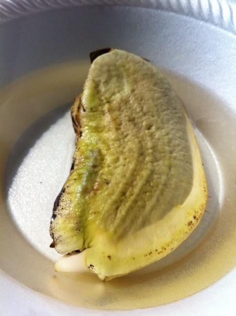 how to cut a mango with a seed