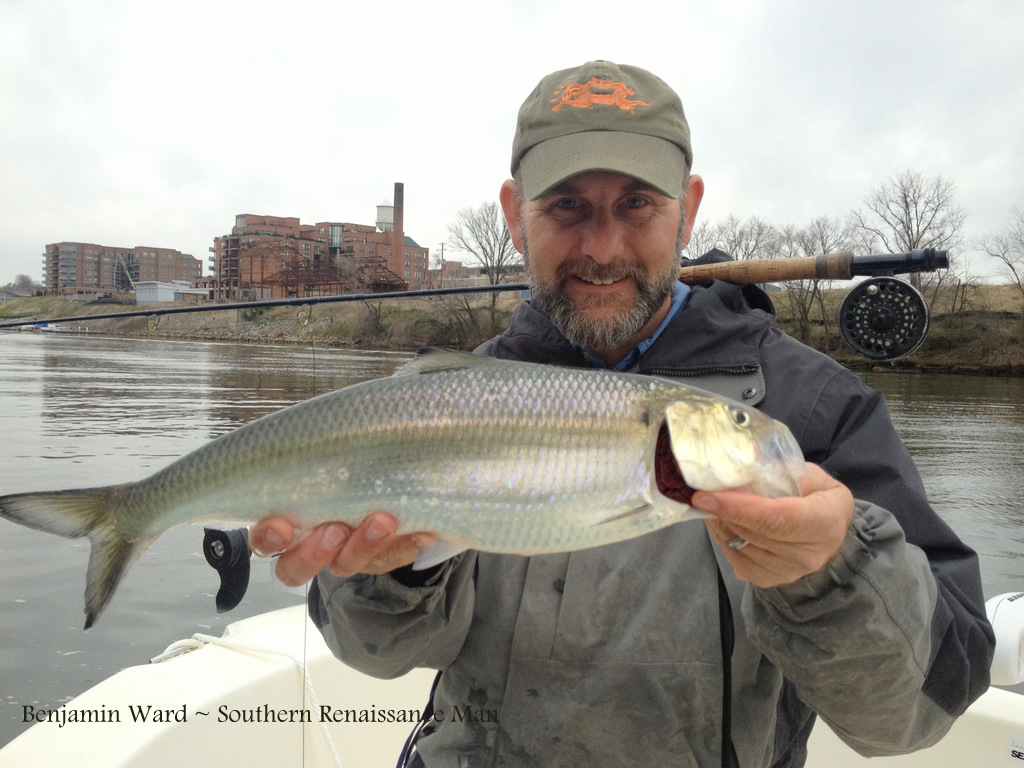 southern renaissance man james river va shad fishing