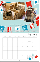 2014_Goma_Calendar_July
