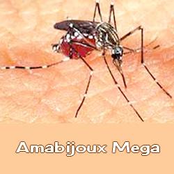 Mosquito da dengue Atividades desenhos quadrinhos  - imagens para colorir mosquito da dengue