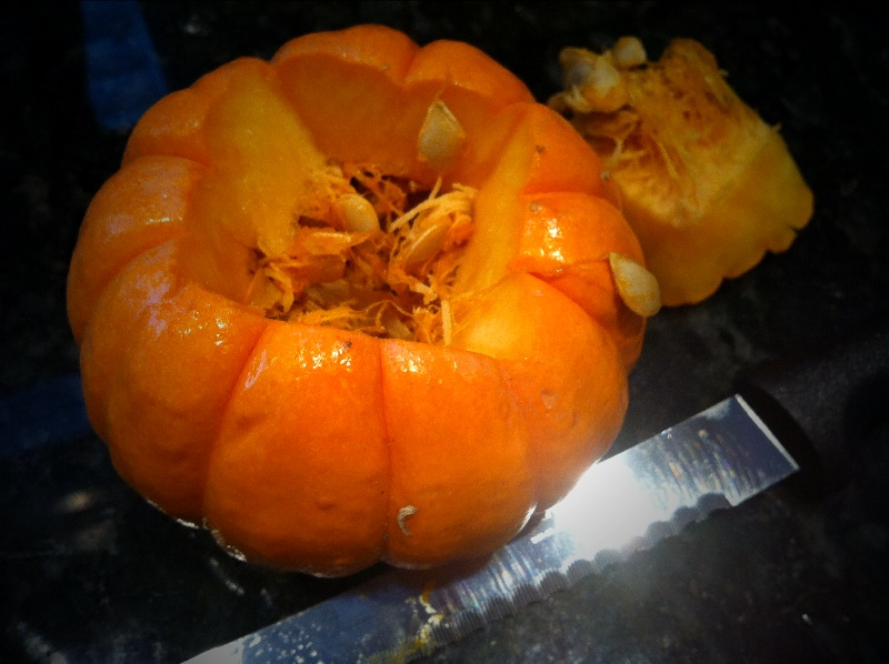 the contemplative creative mini pumpkin o lantern