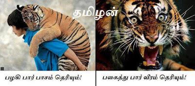 natpu kavithai, friendship poem in tamil, friendhip images download, Tamil natpu kavithaigal, nanban kavidhai, True friend memories poem, friend poem in Tamil, download natpu kavithaikal, boy and his pet tiger images.