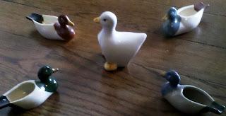 Ducks coming home to mama