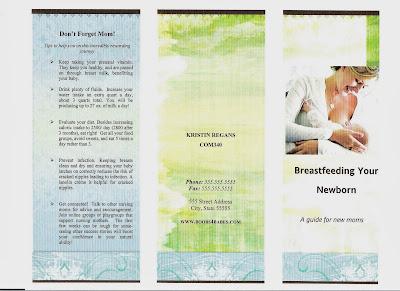 breastfeeding brochure templates bloom loft sample brochure