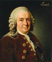 Retrato de Charles Linneo