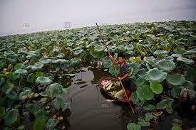 West lake Hanoi  VietNam